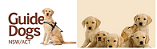 GuideDogs_feature